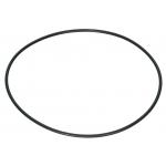 Ersatz-O-Ring für Micropol 100